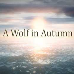 A Wolf in Autumn