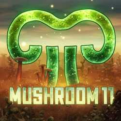 Mushroom 11