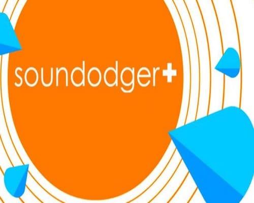 Soundodger+ PC Game Free Download