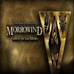 The Elder Scrolls III Morrowind Game of the Year Edition
